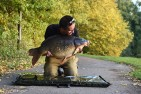 Iphone Carpers